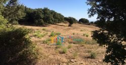 Restoration Project: 3ha Land and 86 M2 Stazzo for Sale in Luogosanto, 23 Km from the Sea, North Sardinia