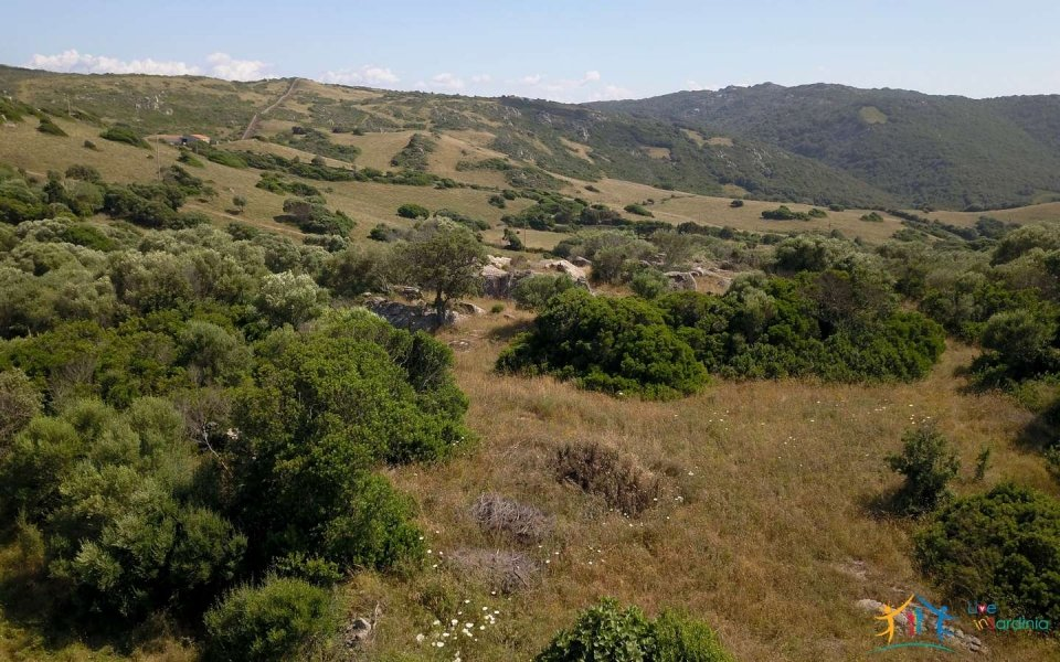 Lapponi: 1 Ha Plot for Sale Near the Sea, building Permission, 6 Km from the Rena Maiore Beach, Northen Sardinia