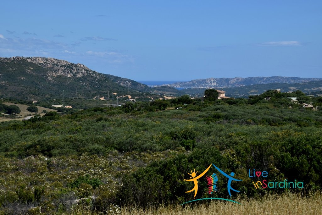 6 Ha Buildable Land With Stunning Sea Views for Sale in Arzachena, North Sardinia