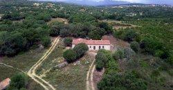 Traditional Farmhouse for Sale in Telti, Near Olbia, North Sardinia