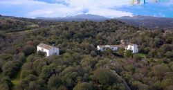 Superb Unfinished Rural Villas With 3,4 Ha for Sale Near Olbia, North Sardinia