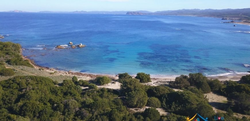 Sardinian Style Villa With Land for Sale in Luogosanto, North East Sardinia