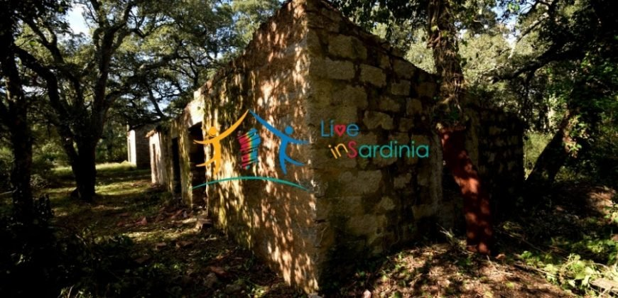 120 M2 Ruin and 3,9 Ha Land for Sale in Calangianus, Northern Sardinia