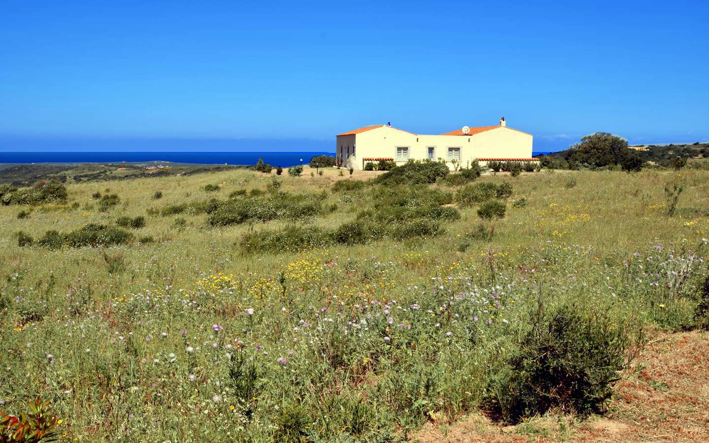 Sardinian Cottage With 2 Ha La for Sale Near Aglientu, Northern Sardinia