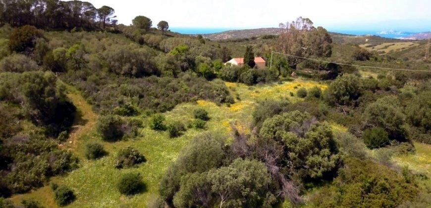 Lapponi: 1 Ha Plot for Sale Near the Sea, building Permission, 6 Km from the Rena Maiore Beach, Northen Sardinia