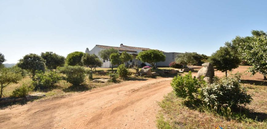 Wonderful 230 M2 Country Home and 1 Ha Land for Sale in Arzachena, North East Sardinia