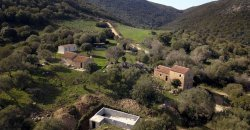 Traditional 14 Ha Land and Farmhouse for Sale in Luogosanto 30 Km from Porto Cervo