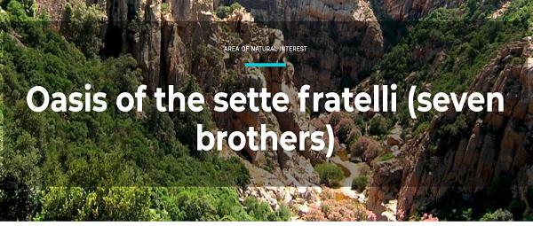 sette fratelli