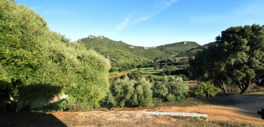 Attractive 260 M2 Country Home for Sale in Crisciuleddu Near Porto Cervo, North East Sardinia