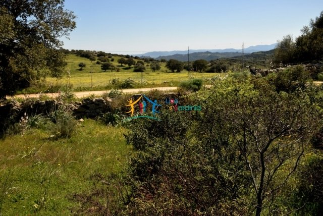 Attractive 2 Ha Plot for Sale With Building Permission 11 Km from Olbia, North East Sardinia