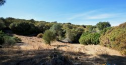 Country Home To Be Restored For Sale In Luogosanto Northern Sardinia