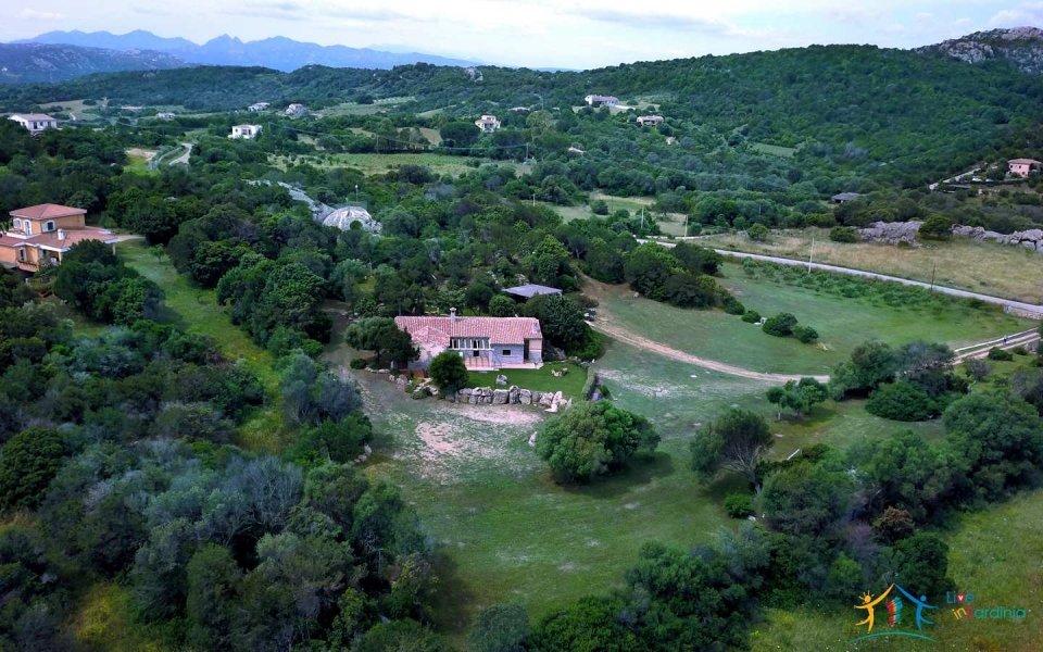 Refined 5 Bed Villa With Sea Views and 1,4 Ha Park Near Porto Cervo North East Sardinia