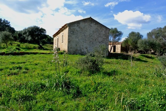 Fabolous 6 Ha Land and 130 M2 Farmhouse for Sale in Arzachena 17 Km from Porto Cervo