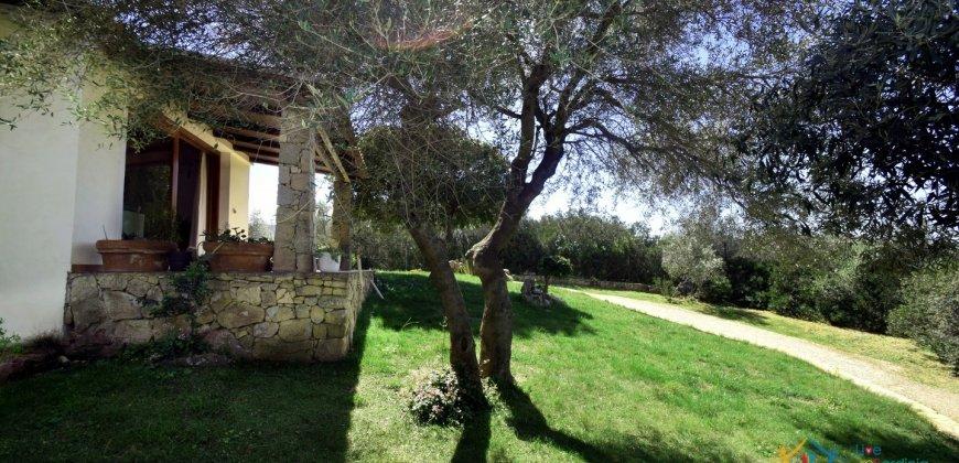 Cosy House For Sale In Porto Rotondo, 10 Km From Olbia, North Sardinia