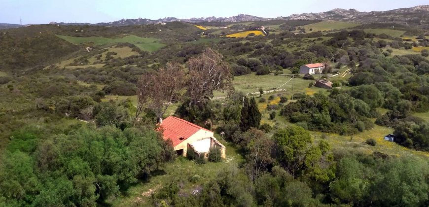 5600 M2 Land and 167 M2 Farmhouse for Sale in Aglientu, 6 Km from the Sea, Northern Sardinia