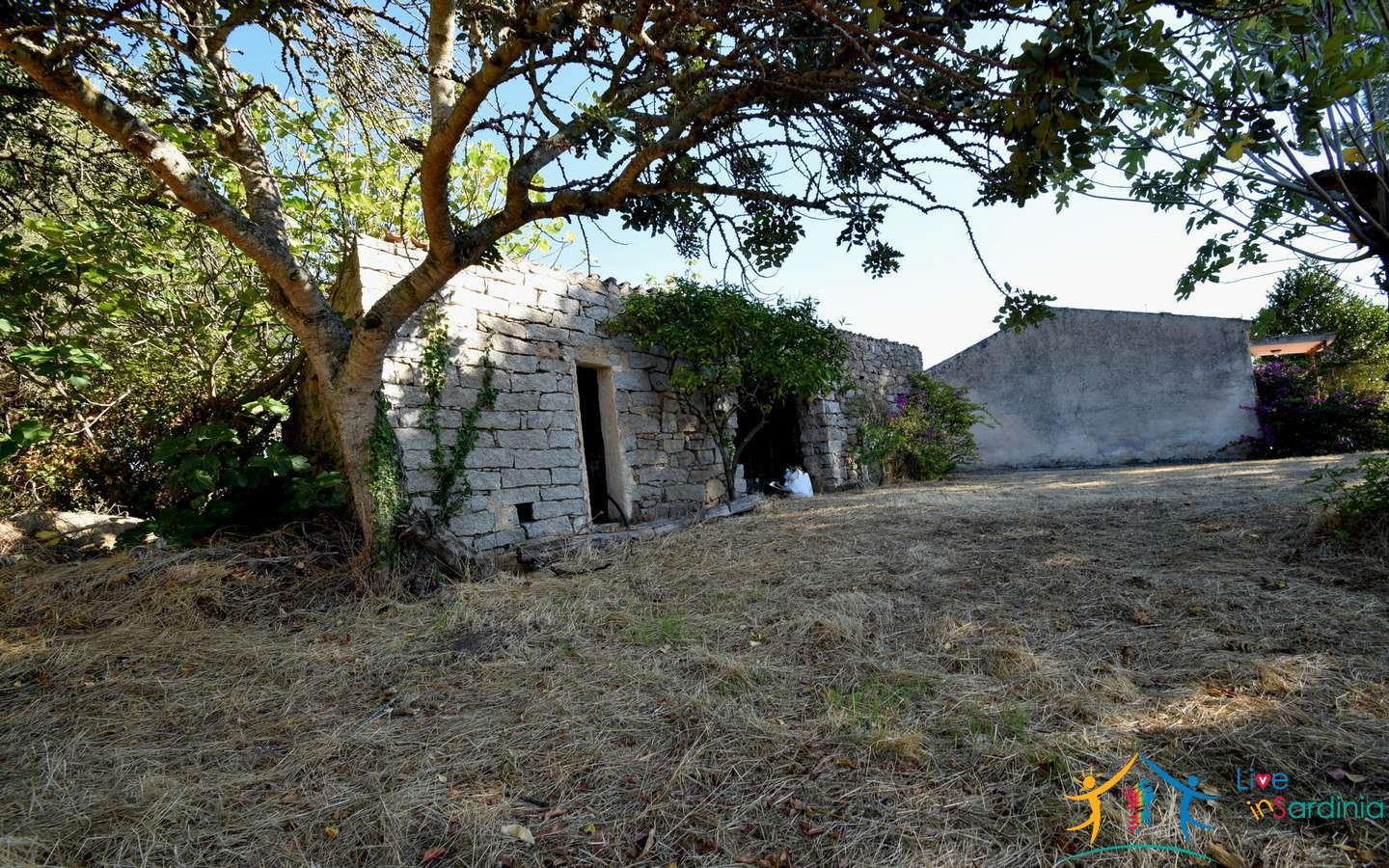 Semidetached Rural Home With 3000 M2 Orchard for Sale in Telti, North Sardinia