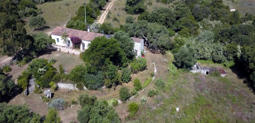 "Traditional ""Stazzo"", Farmstead With 1 Ha Land For Sale Near Luogosanto, North East Sardinia"