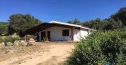 Delightful Rural Villas With 1 Ha Park For Sale Near Olbia, North Sardinia