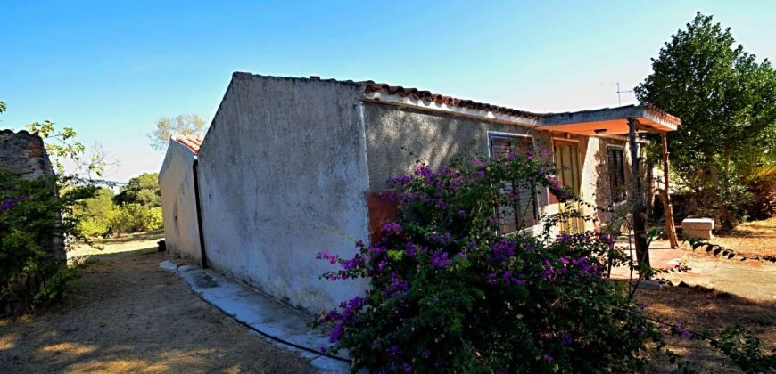 Vineyard And Farmstead For Sale In Sardinia