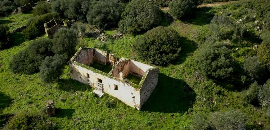 Country Home For Sale Italy ref. Muriscu