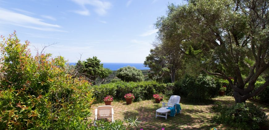 Delightful Villa With Sea View for Sale In San Pantaleo ref. Milmegghju
