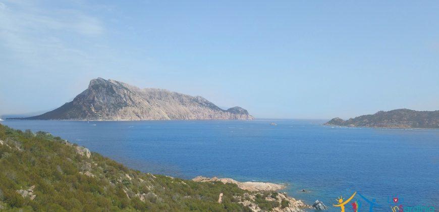 Property For Sale San Teodoro Sardinia ref. Lentischio
