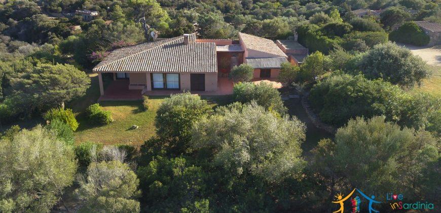 Sea view villas for sale San Pantaleo Sardinia ref.Villa Fulvia