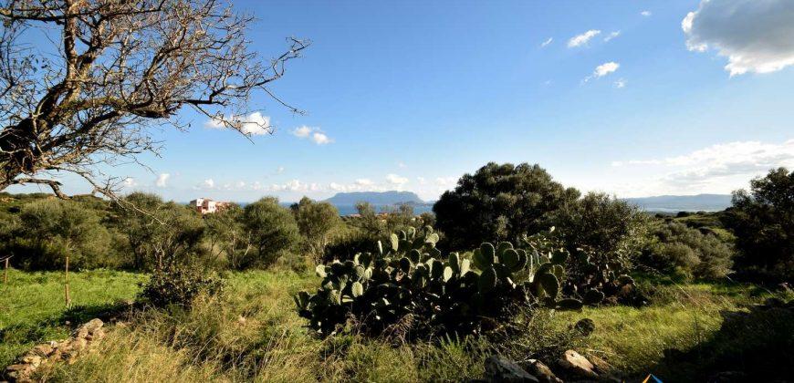 Sea View Stazzu For Sale Olbia Sardinia ref. Muriscu 2