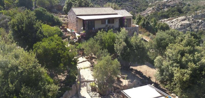 Sea View Villa For Sale In San Pantaleo Sardinia ref.Aglientina