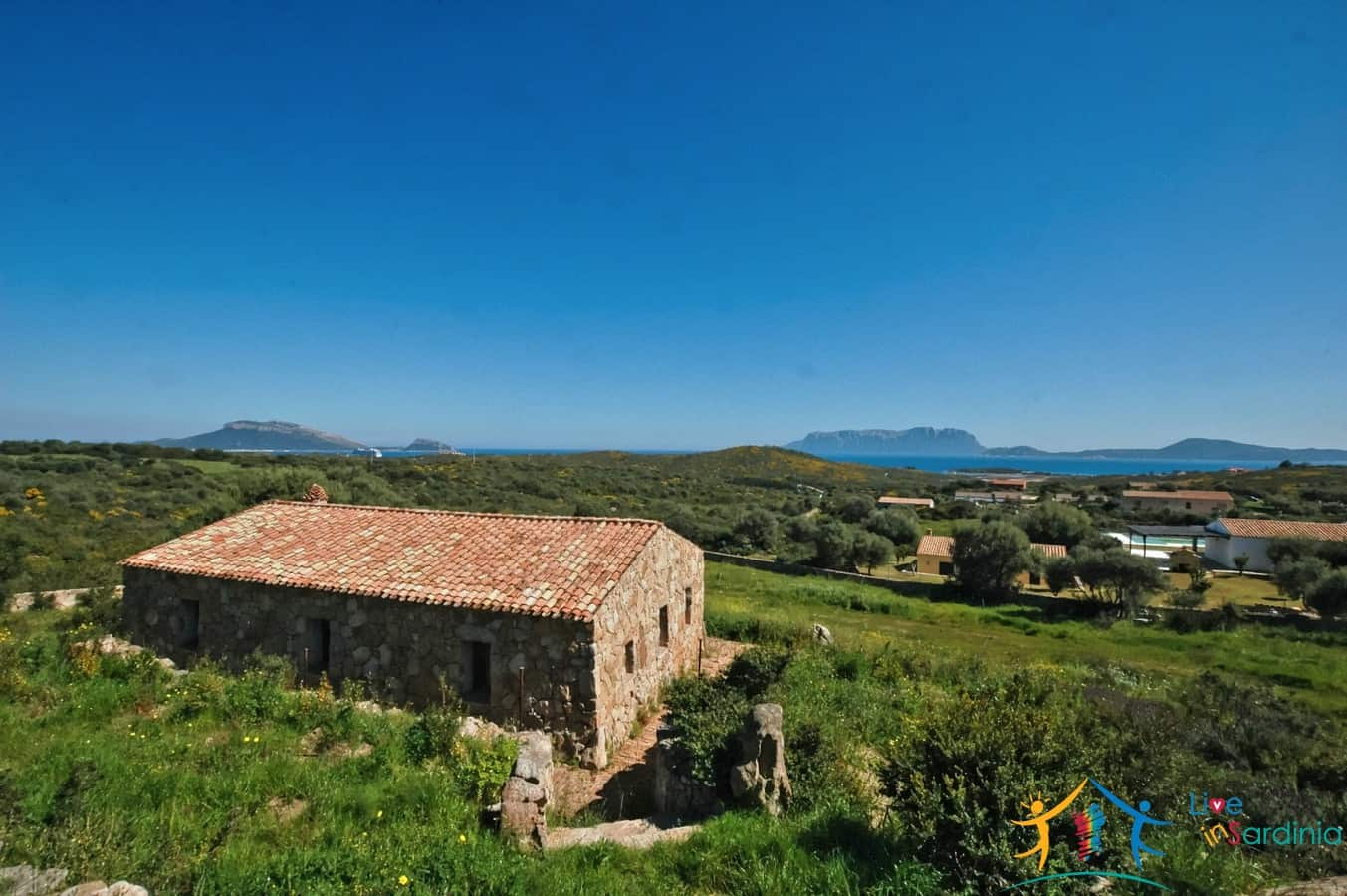 Sea view villa for sale Olbia Ref. Binzolas