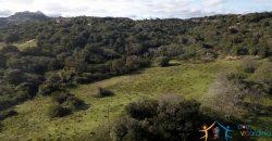 7 Ha Buildable Land For Sale Sardinia ref. Cuncosu